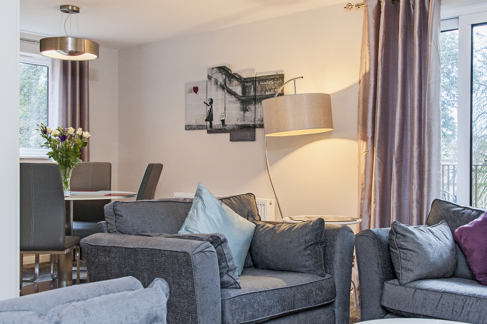 Hedgemead Court luxury self-catering apartment in Bath city centre - Living Area